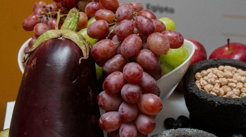 Impulsa México vitivinicultura productiva, sustentable y con desarrollo económico y social